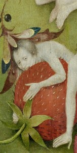 Bosch, Garden of Earthly Delights, Strawberry detail 3